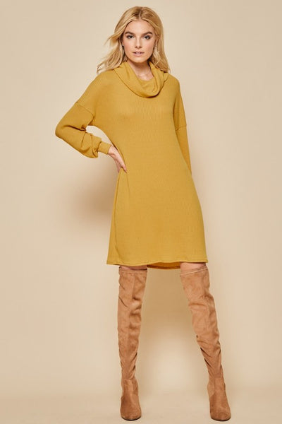 Solid Knit Sweater Dress