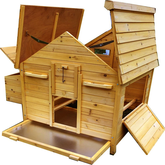 Chicken Coop House For 6-9 Chickens