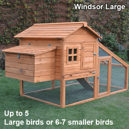 Chicken Coop & Rabbit Hutch With Nest Box Windsor Large For 5-7 Birds