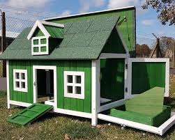 Chicken Coop House Barn House Green For 3 to 4 Birds