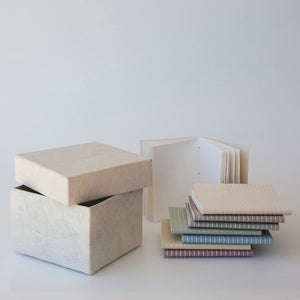 MINI NOTEBOOKS IN A BOX