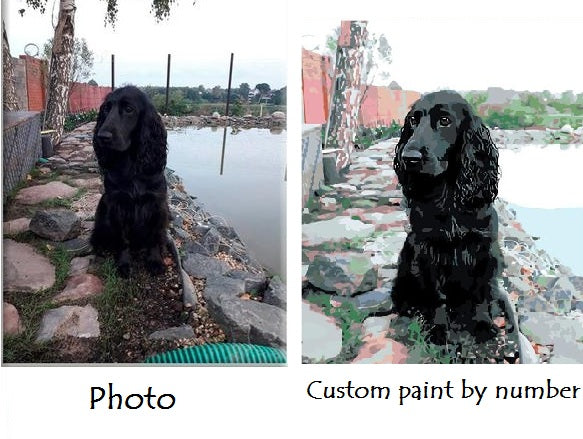 paint by number your own photo