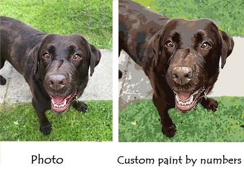 Paint the photo you like - Custom paint by numbers