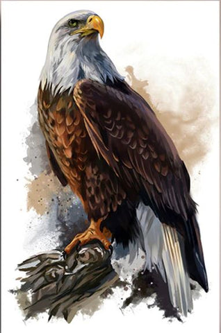 Bald Eagle on Tree - Birds Paint By Numbers