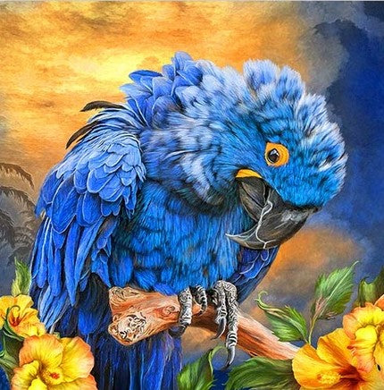 Hyacinth Macaw- Birds Paint By Numbers