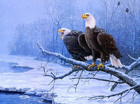 Winter Eagle  - Birds Paint By Numbers