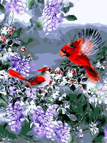 Red Birds - Birds Paint By Numbers
