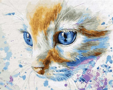 Blue Eyes Cat- Animals Paint By Numbers