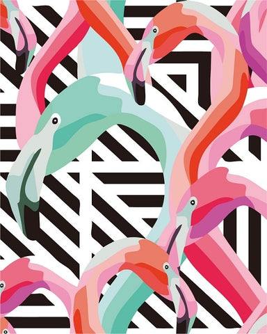 Pink Blue Flamingo - Birds Paint By Numbers