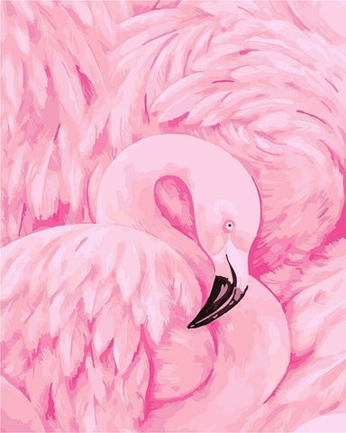 Pink Flamingos  - Birds Paint By Numbers