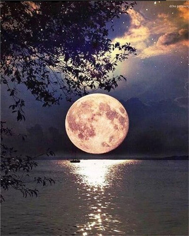 Beautiful Full Moon on Lake- Landscape Paint By Numbers