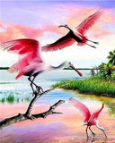 Pink and White Stork - Birds Paint By Numbers