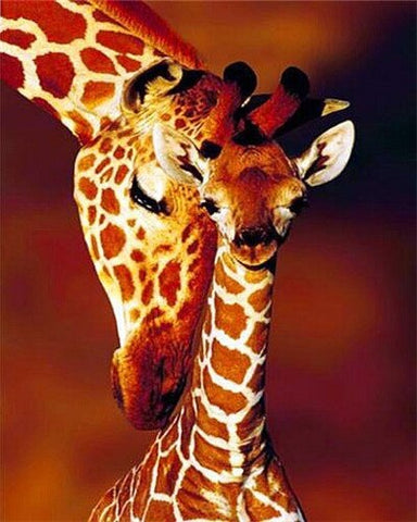 Adult Giraffe And Baby- Animals Paint By Numbers