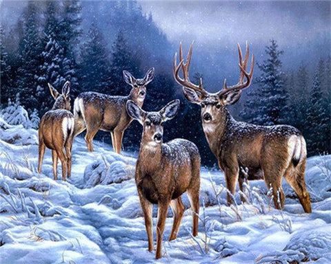 Alaska Deers- Animals Paint By Numbers