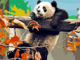 Giant Panda - Animals Paint By Numbers