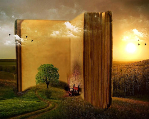 Big Book in Forest- Landscape Paint By Numbers