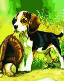 Dog Playing Baseball - Animals Paint By Numbers