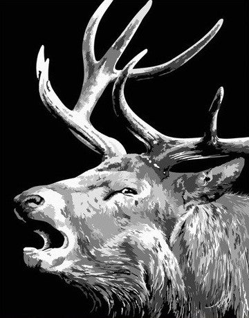 Black And White Elk- Animals Paint By Numbers