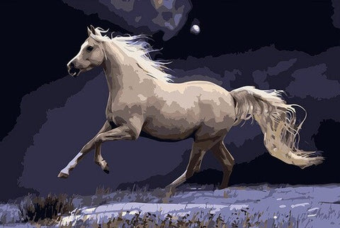 Galloping White Horse - Animals Paint By Numbers