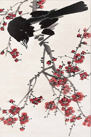 Magpies Plum Flower - Birds Paint By Numbers
