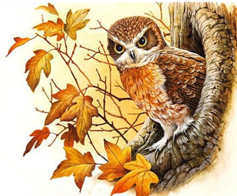 Owl Stands In A Tree Hole  - Birds Paint By Numbers