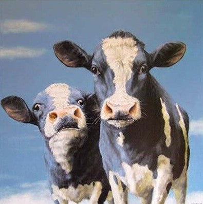Cows- Animals Paint By Numbers