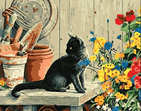 Black Cat On Table - Animals Paint By Numbers