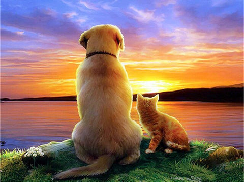 Cat and Dog Watching The Sunset- Animals Paint By Numbers
