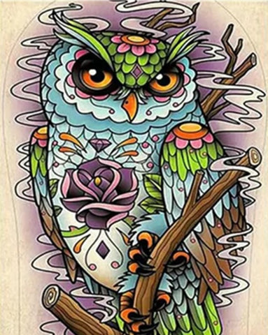 Colorful Owl - Birds Paint By Numbers