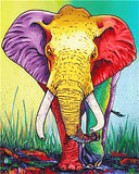 Colorful African Elephant- Animals Paint By Numbers