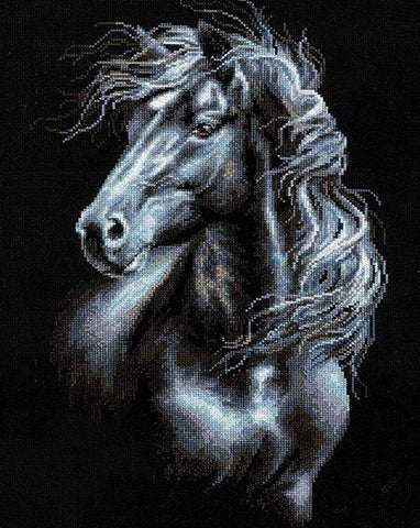 Black And White Horse- Animals Paint By Numbers