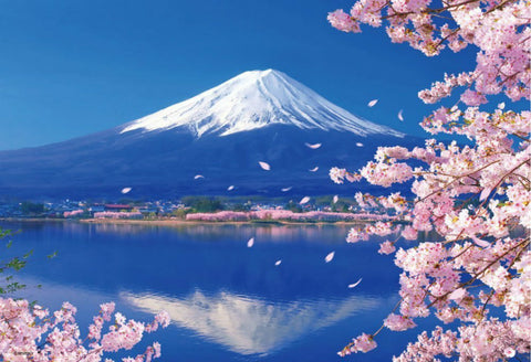 Cherry Blossoms under Mount Fuji - Landscape Paint By Numbers