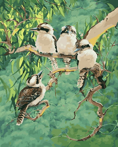 Laughing Kookaburra - Birds Paint By Numbers
