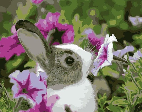 Bunny Smelling  - Animals Paint By Numbers