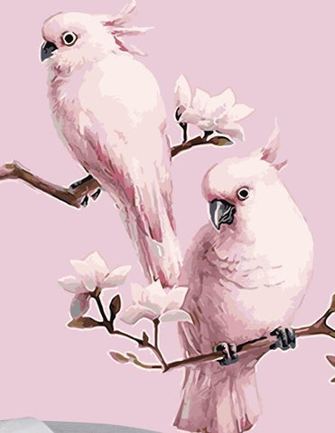 Pink Parrot  - Birds Paint By Numbers