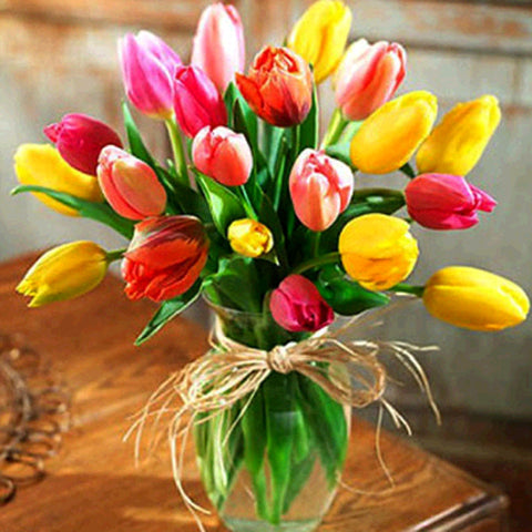 Colourful Tulips -  Flowers Paint By Numbers