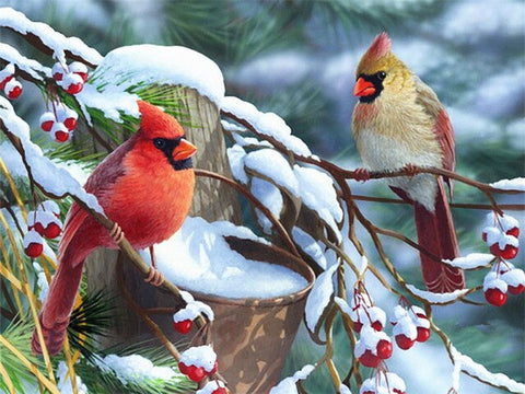 Beautiful Birds in Winter - Birds Paint By Numbers