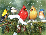 Birds in Winter - Birds Paint By Numbers