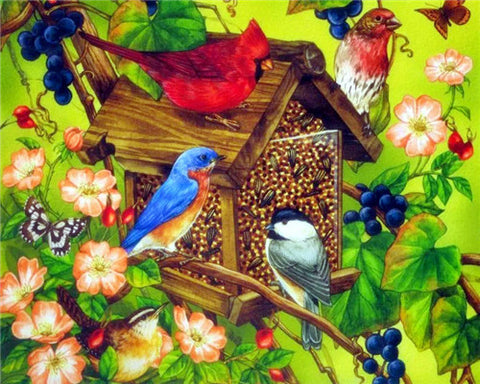 Colourful Bird Houses- Birds Paint By Numbers