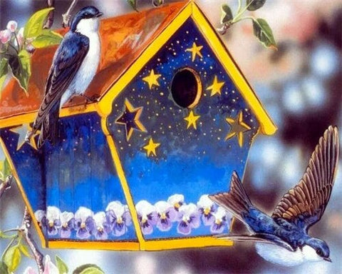Birds on Beautiful Nest Box - Birds Paint By Numbers