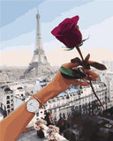 Red Rose Paris - Cities Paint By Numbers
