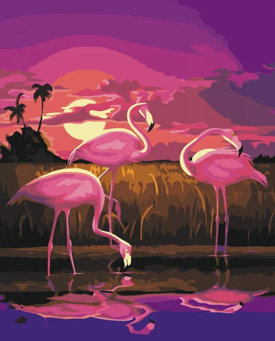 Sunset Flamingo- Birds Paint By Numbers