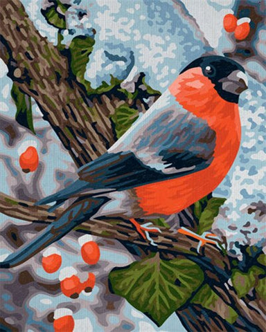 Bullfinches on a Branch - Birds Paint By Numbers