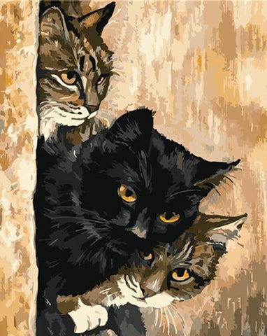 Cat Behind the Wall- Animals Paint By Numbers
