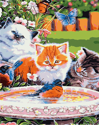 Cats Looking At Bird  - Animals Paint By Numbers