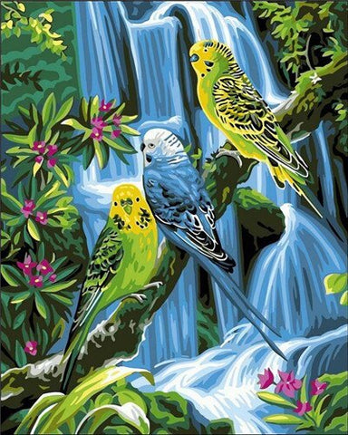 Birds on Jungle- Birds Paint By Numbers