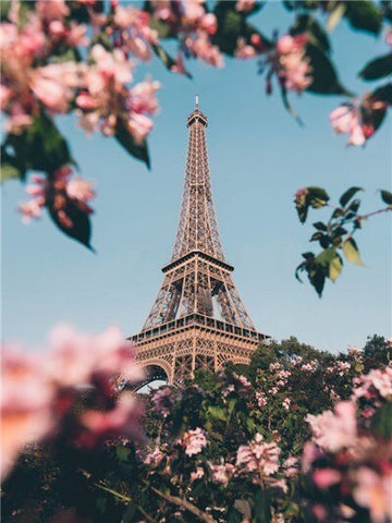 Paris Eiffel Tower in Spring- Cities Paint By Numbers