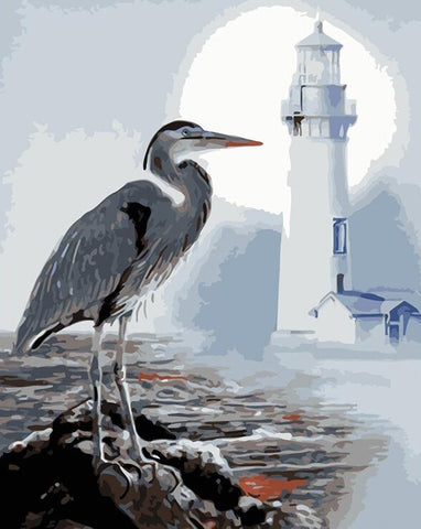 Seabirds lighthouse - Birds Paint By Numbers