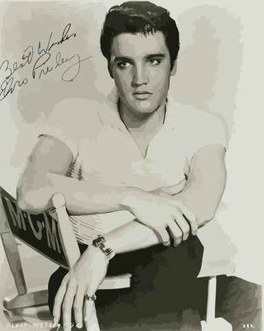 Young Elvis Presley  - People Paint By Numbers