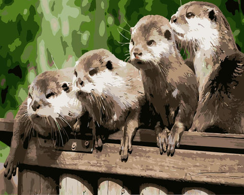 Cute Otters - Animals Paint By Numbers